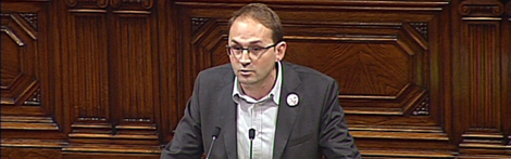 El secretari general d'ICV-EUiA, Joan Herrera, al Parlament